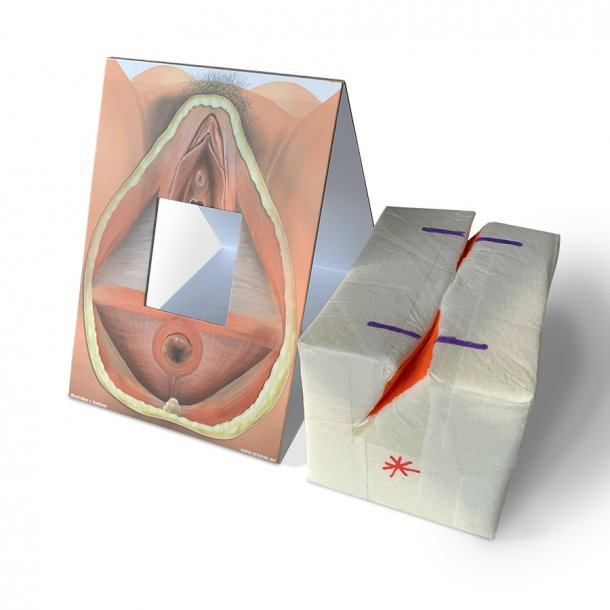 Mediolateral episiotomy repair trainer - patient's right side